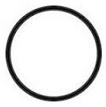 AM151117 - Pentek #10 Hot Water O-Ring #241 Viton